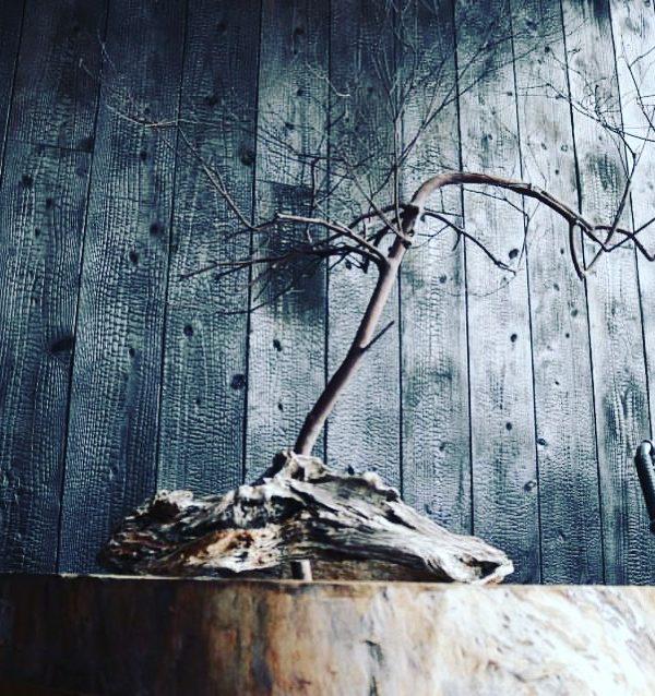 CONNECTエントランス「焼杉」でリニューアル